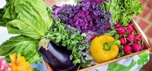 Eiweißreiches Gemüse